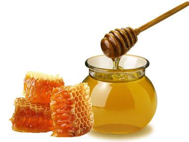Kết quả hình ảnh cho mật ong rừng